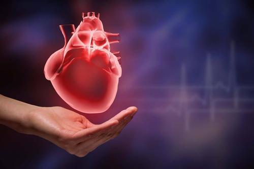 产品面出现轻度心脏病后公司停止投放健康油脂广告