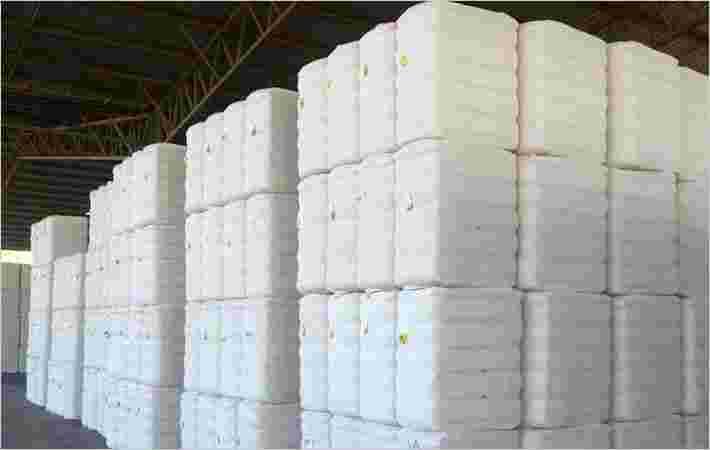 所有印度未加工棉花抵达Touch 3Cr Bales  -  ICF报告