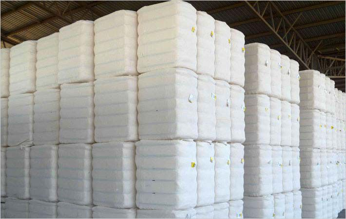 CCI的棉花采购附近5bn Bale-mark