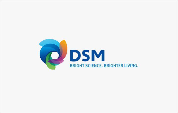 CVC合作伙伴DSM的聚合物中间体业务